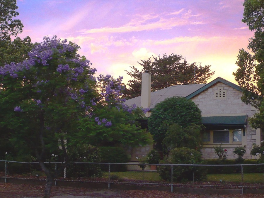 Angaston Rose BB - Accommodation in Bendigo