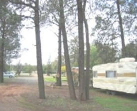 The Kelpie Caravan Park - Accommodation in Bendigo