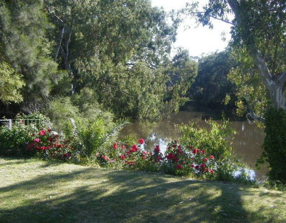 Bidgee Bankside Cottage - Accommodation in Bendigo