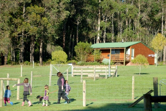 Diamond Forest Farm Stay - Accommodation in Bendigo