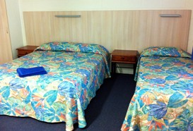 Mango Tree Motel - Accommodation in Bendigo