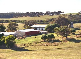 Sun Valley Eco Farm - Accommodation in Bendigo