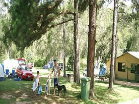 Glasshouse Mountains Holiday Village - Accommodation in Bendigo