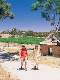 Brinkworth Country Lodge Bampb - Accommodation in Bendigo