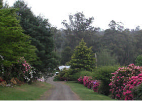 Mountain Rivers Lodge - Accommodation in Bendigo