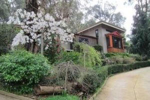 Cherryblossom BampB - Accommodation in Bendigo