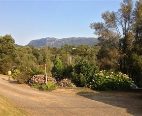 Rosebery Cabin and Tourist Park - Accommodation in Bendigo