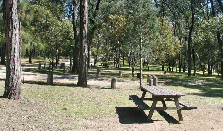 Lemon Tree Flat campground - Accommodation in Bendigo