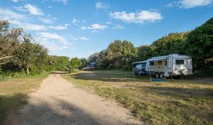 Racecourse Campground - Accommodation in Bendigo