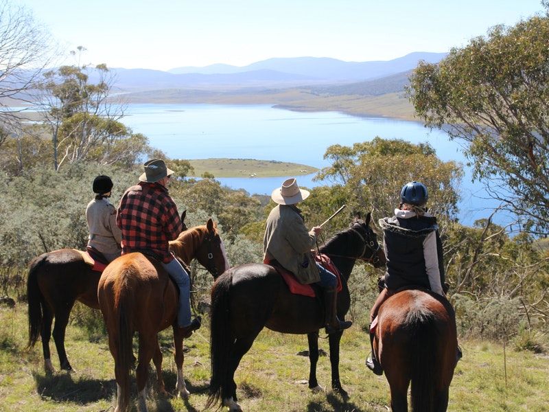 Reynella Homestead and Horseback Rides - Accommodation in Bendigo
