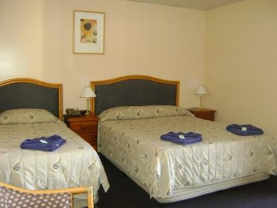 Mudgee Motor Inn - Accommodation in Bendigo