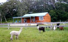 Moorallie Cottage Farm Stay - Accommodation in Bendigo