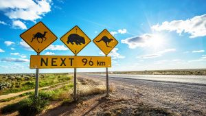 Nullarbor Roadhouse - Accommodation in Bendigo