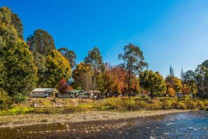 Porepunkah Bridge Holiday Park - Accommodation in Bendigo