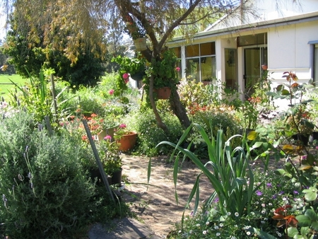 Warren Grange Farmstay and Bed  Breakfast - Accommodation in Bendigo