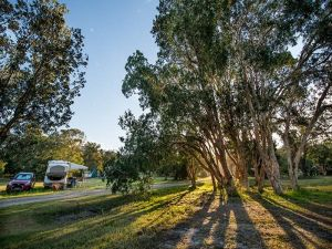 Delicate campground - Accommodation in Bendigo
