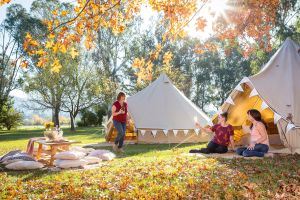 Valley View Glamping - Accommodation in Bendigo