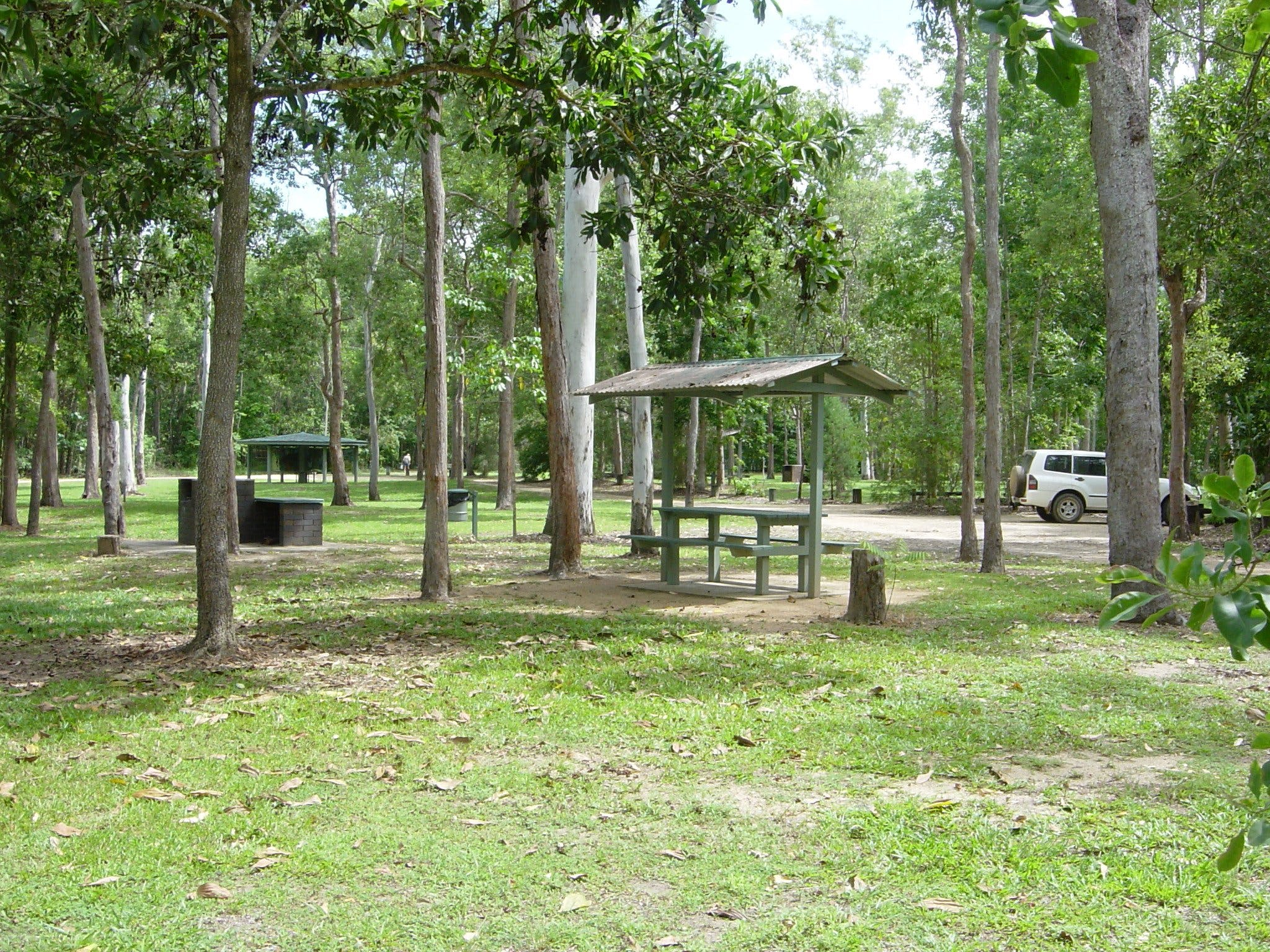 Broadwater camping area Abergowrie State Forest - Accommodation in Bendigo