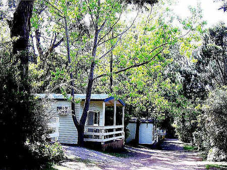 Flinders Caravan Park - Accommodation in Bendigo