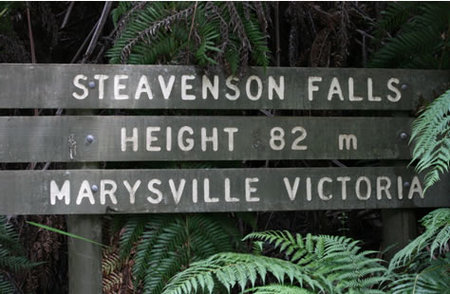 Stevensons Falls - Accommodation in Bendigo