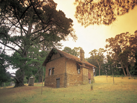 Heysen - The Cedars - Accommodation in Bendigo