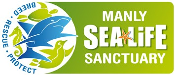 Manly SEA LIFE Sanctuary - Accommodation in Bendigo