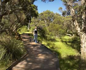 Leschenault Peninsula Conservation Park - Accommodation in Bendigo