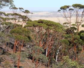 Mount Matilda Walk Trail Wongan Hills - Accommodation in Bendigo