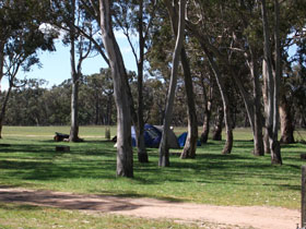 Black Cockatoo Bush Camp - Accommodation in Bendigo
