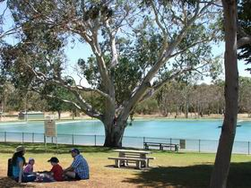 Naracoorte Nature Park and Swimming Lake - Accommodation in Bendigo
