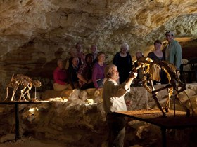 Naracoorte Caves National Park - Accommodation in Bendigo
