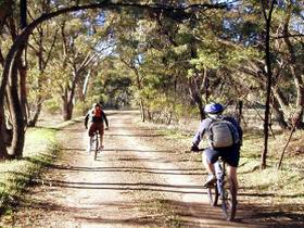 Bike About Mountain Bike Tours And Hire - Accommodation in Bendigo