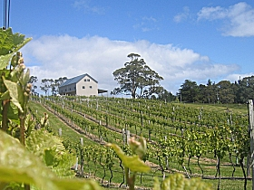 Bruny Island Premium Wines Bar and Grill - Accommodation in Bendigo