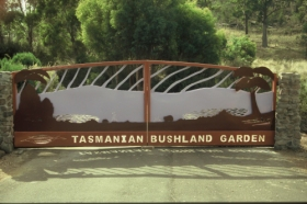 Tasmanian Bushland Garden - Accommodation in Bendigo
