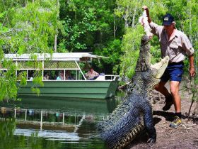 Hartleys Crocodile Adventures