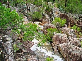 Crows Nest National Park - Accommodation in Bendigo