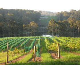 Tilba Valley Wines - Accommodation in Bendigo