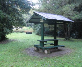 Pine Creek State Forest - Accommodation in Bendigo