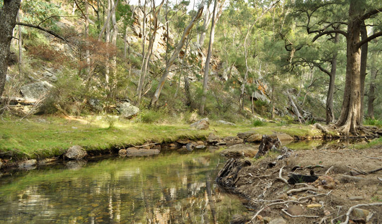 Capertee National Park - Accommodation in Bendigo