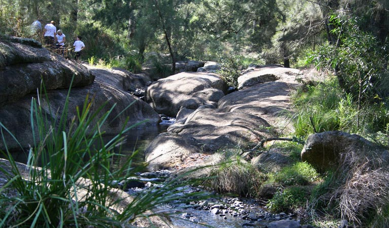 Towarri National Park - Accommodation in Bendigo