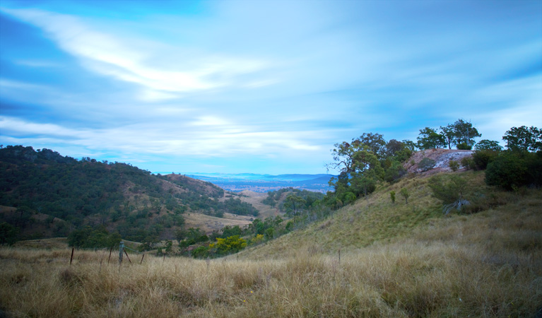 Burning Mountain Nature Reserve - Accommodation in Bendigo