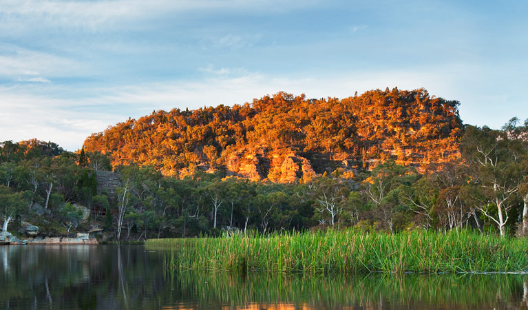 Wollemi National Park - Accommodation in Bendigo