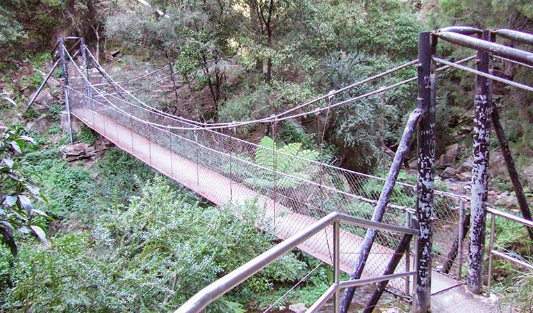 Jenolan River walking track - Accommodation in Bendigo