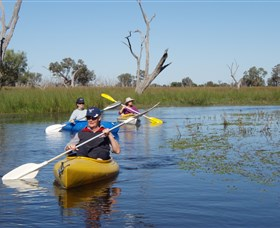 Marsh Meanders - Accommodation in Bendigo