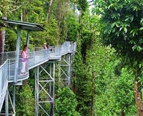 Mamu Tropical Skywalk - Accommodation in Bendigo