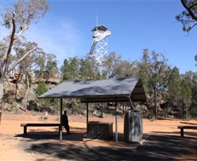 Pilliga Forest Lookout Tower - Accommodation in Bendigo