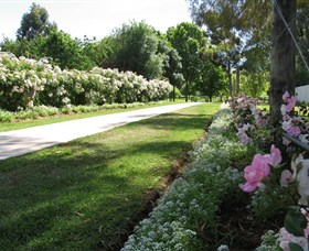 Barooga Botanical Gardens - Accommodation in Bendigo