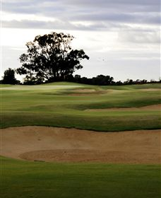 Black Bull Golf Club - Accommodation in Bendigo