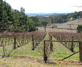 Habitat Vineyard