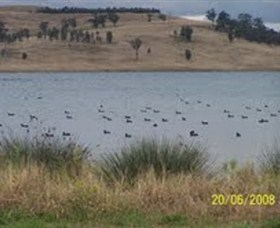 Lake Liddell Recreation Area - Accommodation in Bendigo